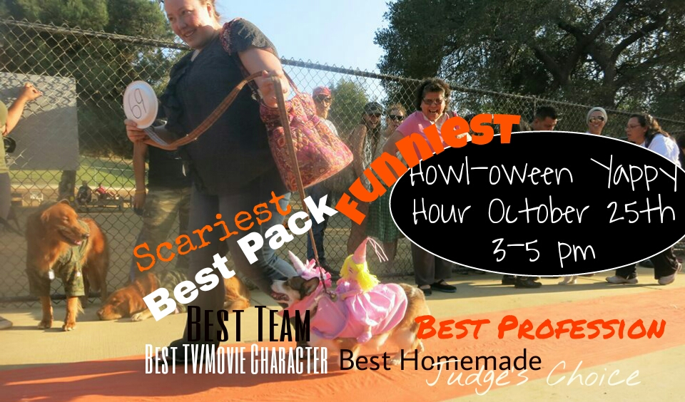 Hermon Dog Park HOWL-oween Dog Costume Contest